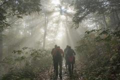 K2-trail-2019-002